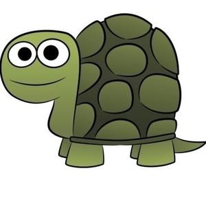 View turtlesnubs's Profile