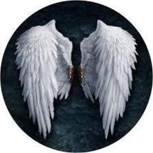 wingsmax Logo