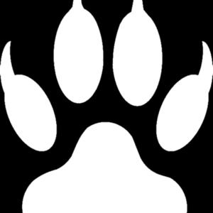 Wolfe87 profile image 53b55ce1e89a310d 300x300
