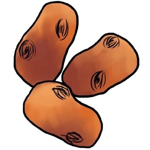 Woodenpotatoes profile image 15091c8ab0c9c022 300x300