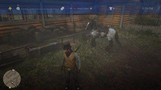 Red Dead Redemption 2: Part 8