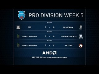 AMD Pro Leagues week 4 - TSG VS Beardman Game 1