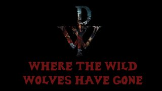 Matt Heafy (Trivium) - Powerwolf - Where The Wild Wolves Have Gone I Acoustic Cover