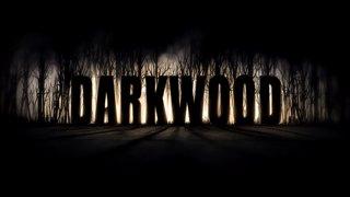 Darkwood  (HARD mode!) - Part 2