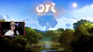 Ori and the Blind Forest - Part 1