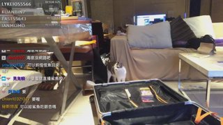 【M.E. 小熊Yuniko】出國潛水前整理行李