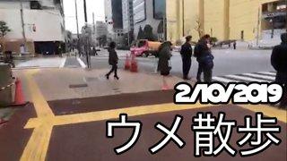 [BeasTV] 2/10/2019 - Daigo Stroll