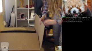 Meg in a box