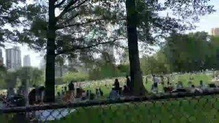 6.22.2019 Central Park New York
