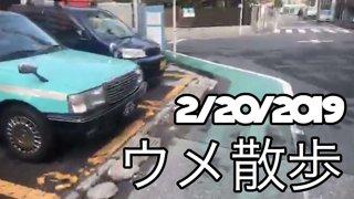 [BeasTV] 2/20/2019 Daigo Stroll