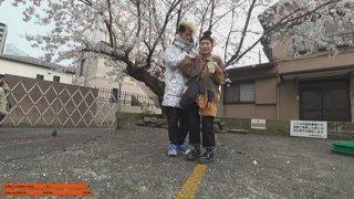 Tokyo, Japan w/ !Haremi - New !YouTube video - !twitter !discord