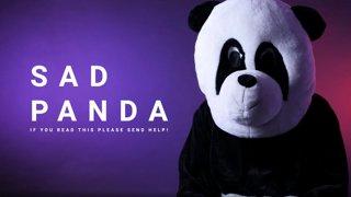 Sad Panda - CORSAIR DreamLeague S11 - The Stockholm Major