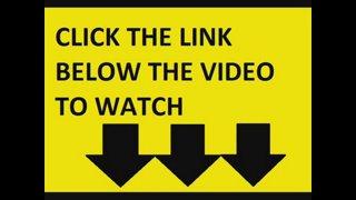 Les Animaux Fantastiques Les Crimes De Grindelwald Streaming Vf Vostfr Cinema Film Complet Hd
