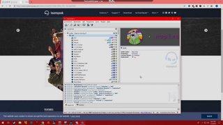 NoPixel does GTA Online w/ dasMEHDI