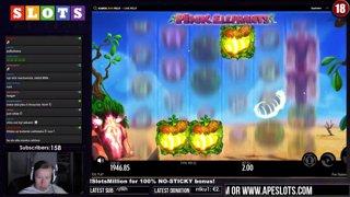 MEGA BIG WIN - PINK ELEPHANT - 2€ BET