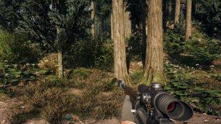 Highlight: Far Cry 5 MP w/ Rich