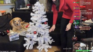 Highlight: Decorating the Xmas Tree for the first time