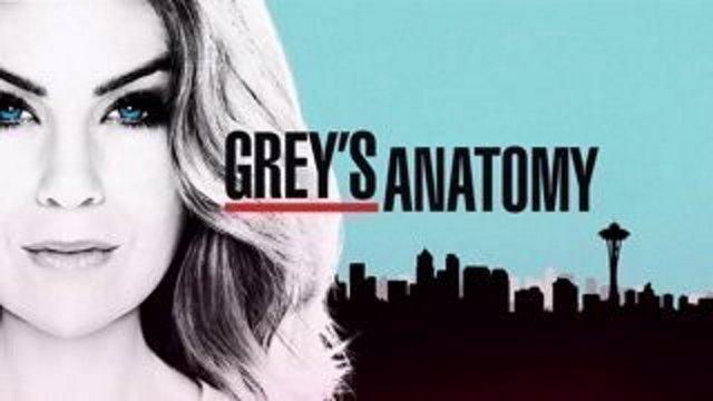 Buludomba Watch Greys Anatomy Season 14 Episode 9 English