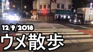 [BeasTV] ウメ散歩/Daigo's Stroll 2018/12/9