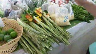 Highlight: Thailand Market Chiang Mai