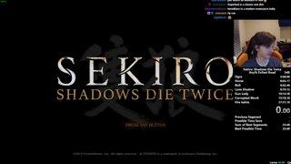 Sekiro Any% Speedrun in 26:25 (World Record)