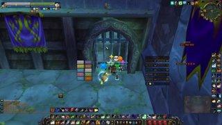 Highlight: kadet - night of premades - Dwarf priest POV - stupid game