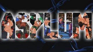 akionlineuniverse - ASYLUM: Fighters Megamix - Night 1 - Twitch