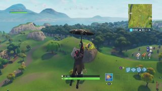 Albinxbl Fortnite Xbox 200 Wins Playing With Followers