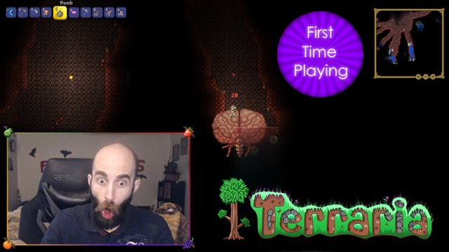 First Time Blind Terraria Playthrough