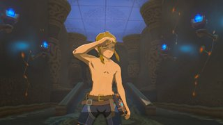The Shirtless BotW Neens Compilation!