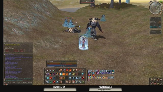 Lineage II - L2Dragon server - High five - Day 3