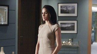 Suits season 8 torrentcounter | Suits Season 8  2019-02-22