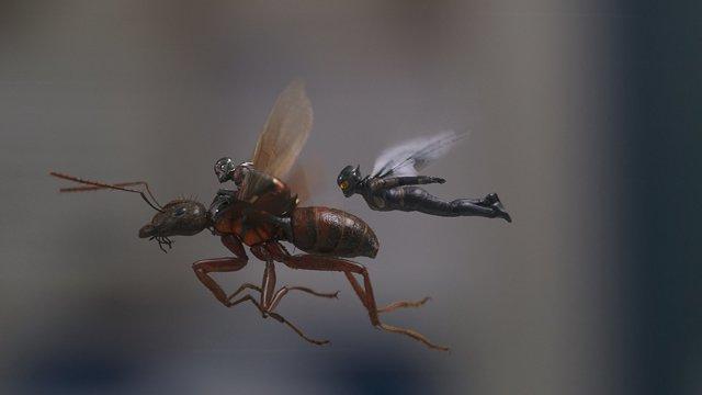 ver Ant-Man and the Wasp (2018) Película completa en línea gratis en HD