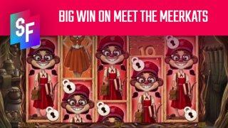 Lazer Bass Hits A Big Win On Meet The Meerkats (SlotsFighter)