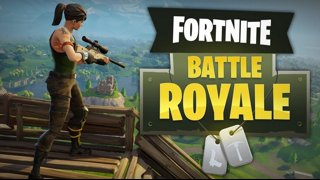 Fortnite Battle Royale Minitage