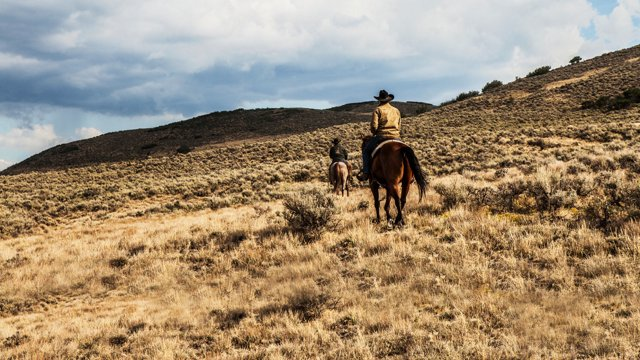 Yellowstone Season 1 Episode 4 : Watch Streaming {123MOVIES}