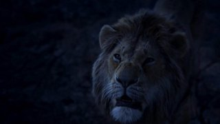 zuhucasula - @The Lion King ~HD 720p «|| FULLMOVIE #'2019