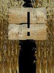 Twitch Streamers Unite - Corn Maze Box Art