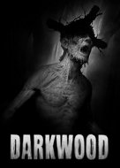 View stats for Darkwood