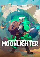 View stats for Moonlighter
