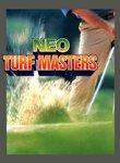 Twitch Streamers Unite - Neo Turf Masters Box Art